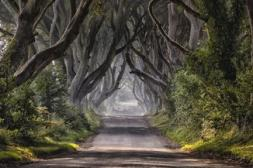 Game of thrones realestate