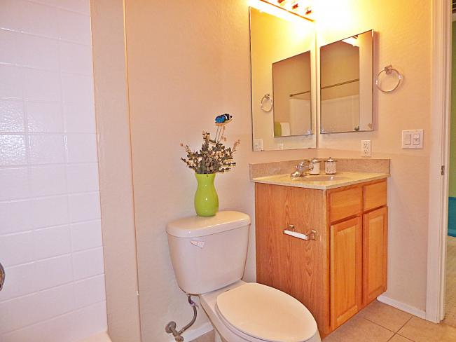 14236 W Windrose Dr P1010303_07222015